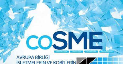 İşletmelerin ve Kobi'lerin Rekabet Edebilirliği Programı ( Cosme)