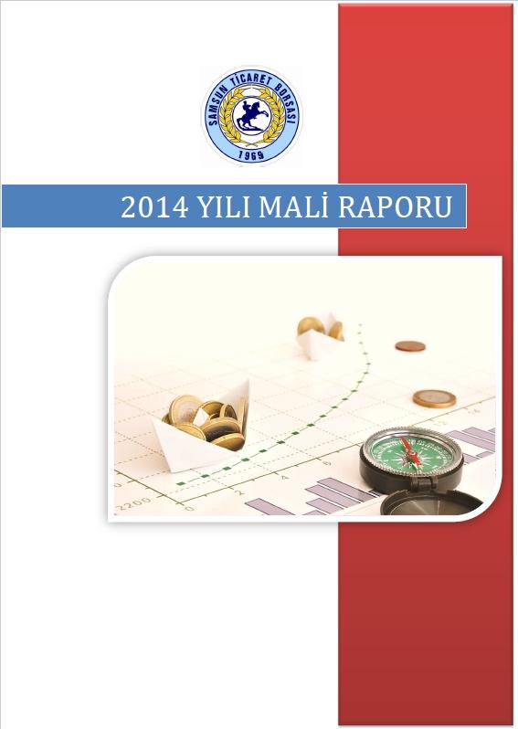 2014 Mali Rapor