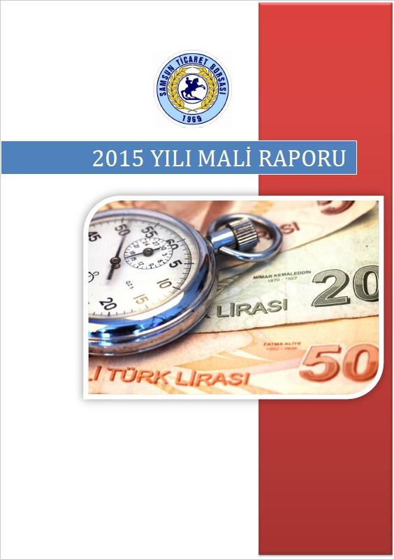 2015 Mali Rapor